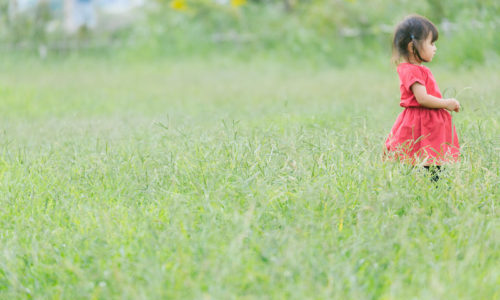 有賀さつき 娘(子供)は元旦那(夫)似の美女に【画像】絵と英語の英才教育